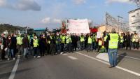 Els pagesos tallant la C-12, a l'altura del Flix, en la protesta per exigir ajuts directes per compensar els danys causats pel temporal Filomena als camps d'oliveres