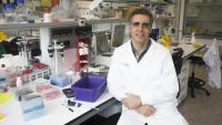 El doctor Manel Esteller ha publicat la recerca amb la doctora Aurora Pujol a la revista 'EBiomedicine'