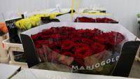 Roses preparades en una parada de Mercabarna