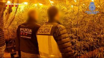 Un agent de la Policia Nacional i un dels Mossos d'Esquadra durant l'operació