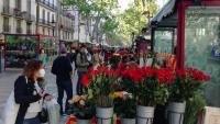 Les parades de flors, plenes de nou de roses per Sant Jordi