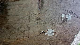 Detall de la representació de dos animals en un gravat de la Vall d'Àssua