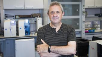 Querol, que ha rebut fa poc el premi estatal de recerca en recursos naturals, als laboratoris de l'Idaea