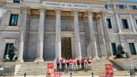 Acte davant del Congrés dels Diputats
