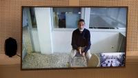 John McAfee durant la vista d'extradició per videoconferència a la Audiència Nacional