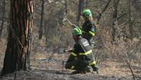 Dos agents rurals treballant en l'incendi del Montgrí aquest dissabte