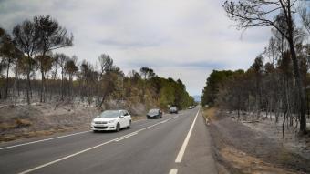 La zona cremada per l'incendi entre Ventalló i Vilopriu