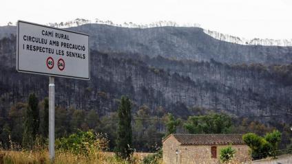 El paisatge gris, calcinat, silenciós, de la serra de Bellprat, municipi on les flames han crenat més de 1.000 hectàrees de terreny forestal