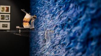 La instal·lació 'Innombrable', de Jonas Van Holanda.