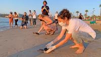 Membres de la Fundació Cram en el moment de l'alliberament de les tortugues careta