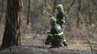 Dos Agents Rurals inspeccionen el lloc on es va iniciar l'incendi