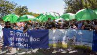 Una imatge de la manifestació contra l'ampliació de l'aeroport del Prat
