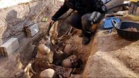 Una de les persones identificades va ser exhumada de la fossa del Cementiri Vell del Soleràs, a les Garrigues. A la foto, en una imatge del 2017