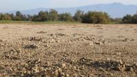 Aspecte de l'estany del Cortalet, que està completament sec