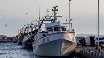 L'aturada afecta més d'una vintena d'embarcacions.